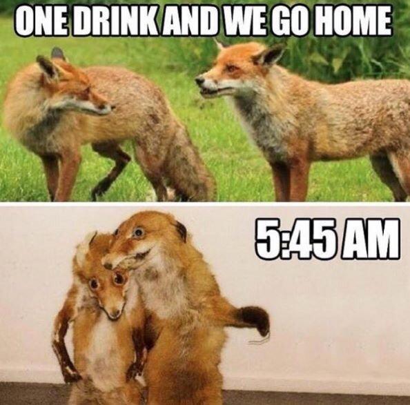 drunken.jpg